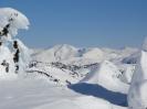 Alaska 2013 - Juneau